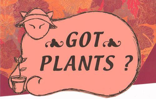 Plant sale_Graphic1