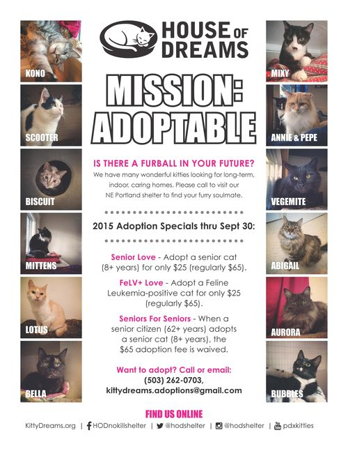 Mission Adoptable Flyer r3._Page_1